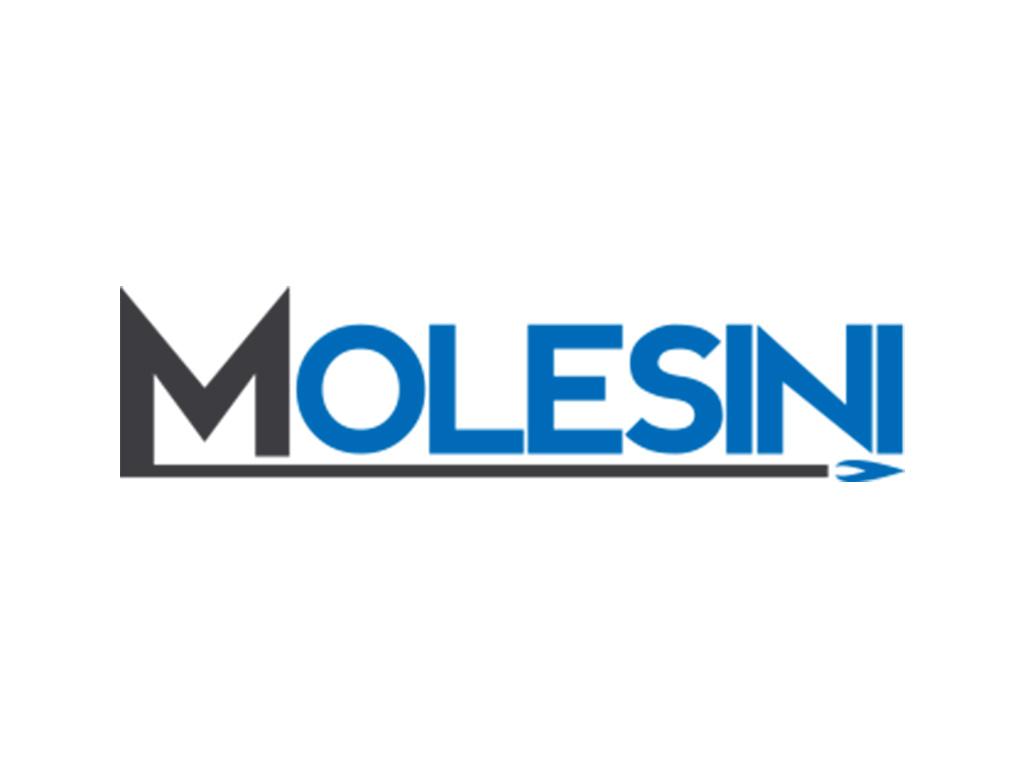 MOLESINI SAS